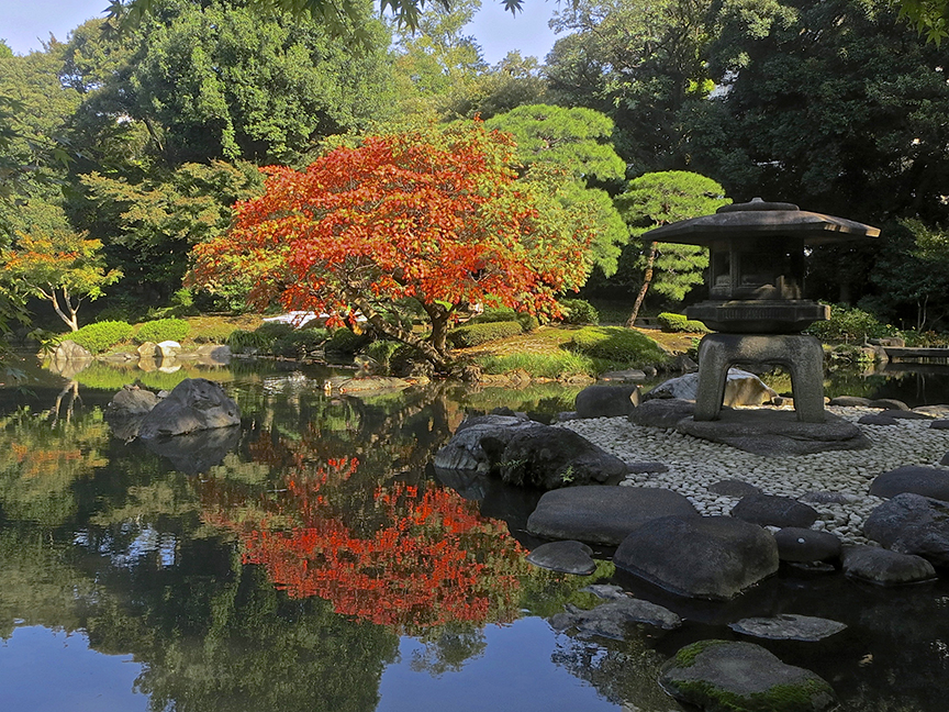 Kyu-Furukawa's Japanese garden is beautiful in every season, and it's rose garden blooms famously in June.