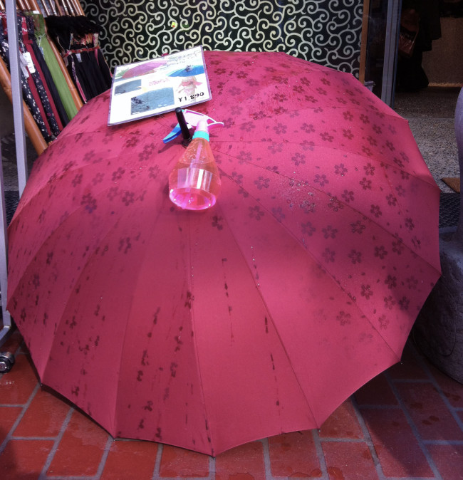 The Koshinzuka souvenir shops have great only-in-Japan stuff, like this umbrella that turns into a show of cherry blossoms when it gets wet.