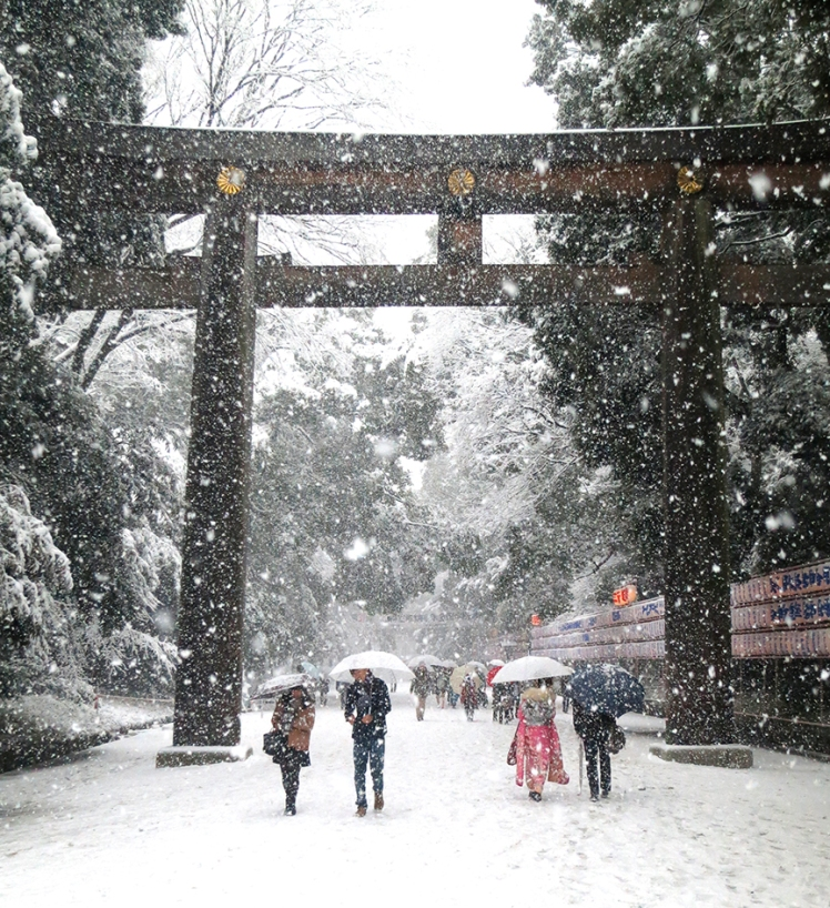The shrine is beautiful and serene in every season, but if you're lucky enough to be in Tokyo when it snows, run as fast as you can to the Meiji Shrine to see how gorgeous the plain cedar and gold architecture is, all shrouded in white.