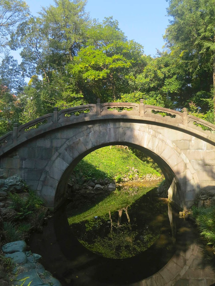 This is called a moon bridge because bridge + reflection adds up to a full moon shape.