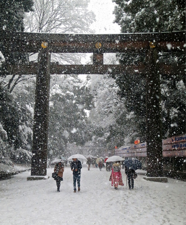 The Meiji Shrine is serene and majestic in any season, and is the best place to see Japanese weddings, kimono-clad kids and the pageantry of all the traditional festivals. More here.
