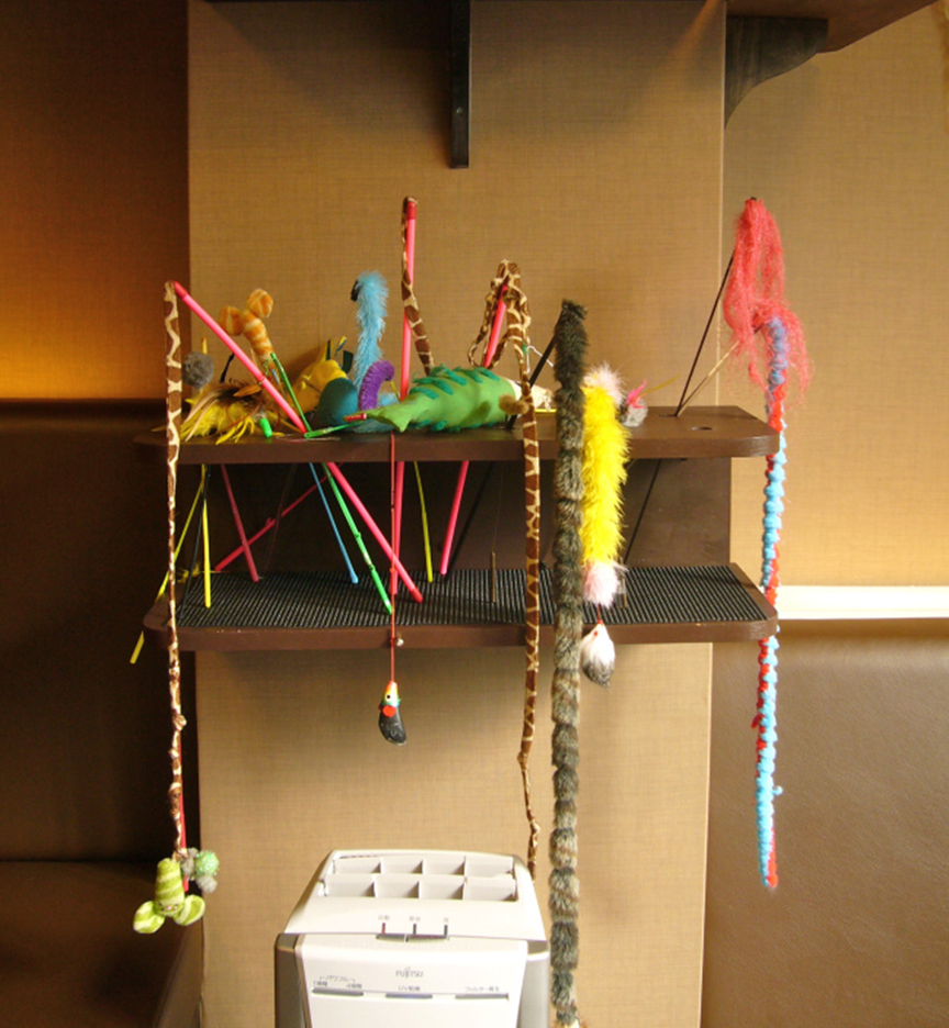 Cat toy stations are strategically placed around the room, to help you tempt a cat to acknowledge your existence.