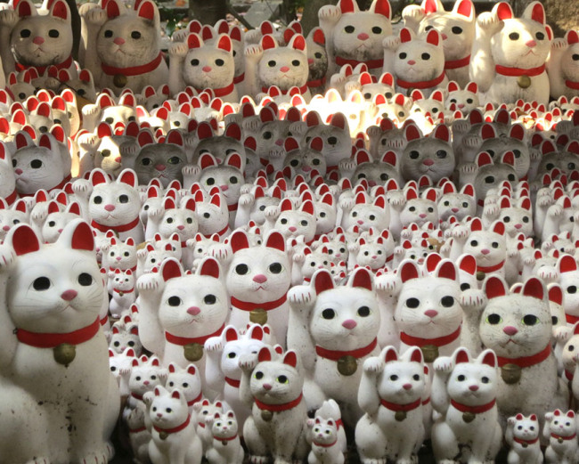 But it's the maneki neko lucky cat shrine that lures me back to this temple again and again.