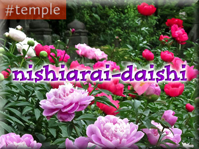 nishiarai
