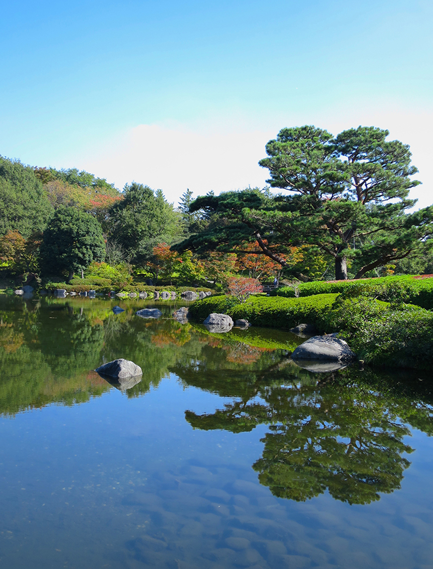 The Japanese garden is centered around a large pond, with magnificent trees and grand views