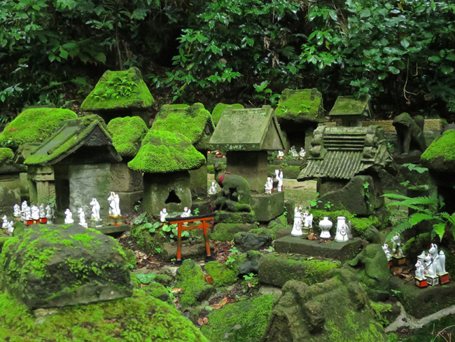 The moss is really breathtaking.