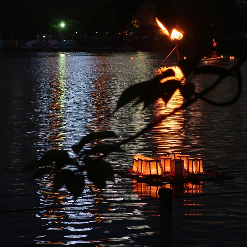 Lanterns floating on Shinobazu pond at the toro nagashi ceremony