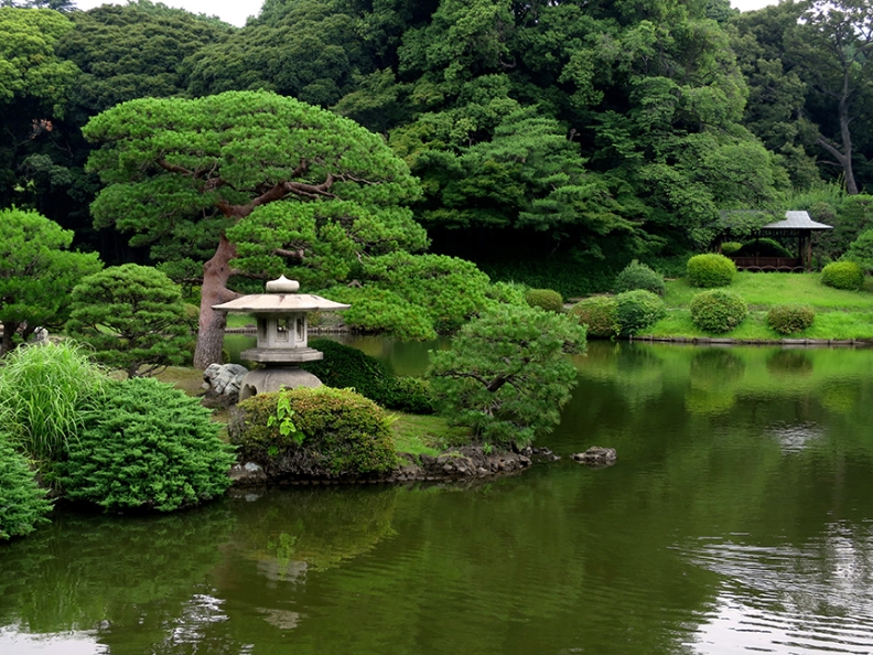 Japanese garden in summertime at Shinjuku Gyoen