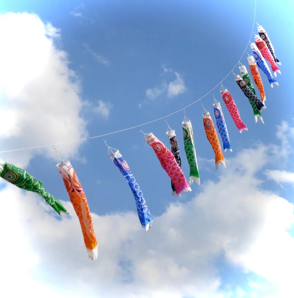 Koi nobori fish flags on a kite string at Yoyogi Park