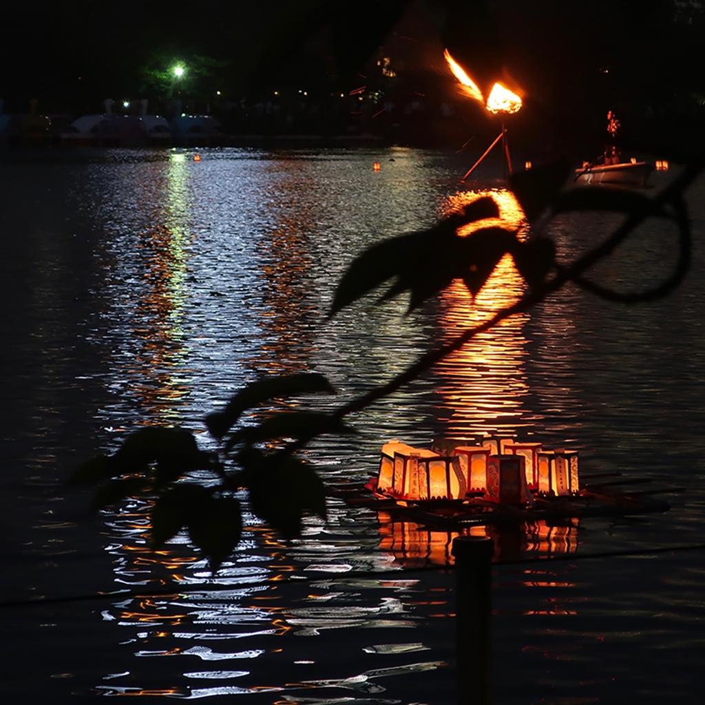 Lanterns floating on Shinobazu Pond
