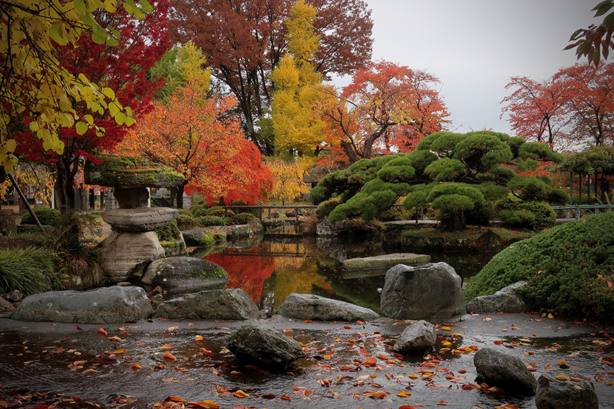 Autumn leaves in garden at Takashima Castle in Suwa City